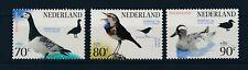 Nederland - 1994 - NVPH 1598-00 (Vogels) - Postfris - BH501