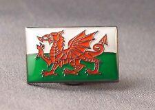 Welsh Flag Pin Badge