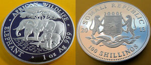 2013 Somalia Large 1 oz Silver 100 shillings-Elephant