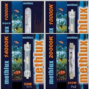 Brenner HQI HIT 70W 150W 250W 6000K 10000K 14000K 20000K Aquarium Beleuchtung