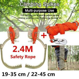 Paar Steigeisen Baumsteigeisen Baumpflege Baumklettern Werkzeug &Sicherheitsband