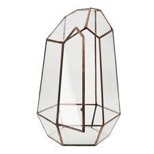 unregelmäßige Glas geometrische Terrarium Box Tabletop Sukkulente Pflanzer