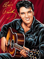 Elvis Presley Guitar Full drill 5D Diamond Painting Embroidery Art Decor P152