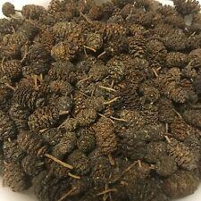 Conos de Aliso ~ 200stk. (= 100gramm) Negro,valor-ph INFERIOR,tratamiento aguas