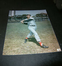 8 X 10 Glossy Photo Ted Williams Boston Red Sox