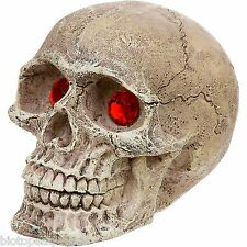 Aquarium Ornament - 8cm HUMAN SKULL WITH RED EYES - fish tank novelty prop