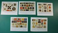 5 x Tafeln Abbildungen von Uniform Teilen preussisches Heer 13x17cm K-1082