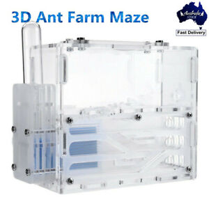 3D Ant Farm Educational earth Nest Formicarium System House Colony Living Feed