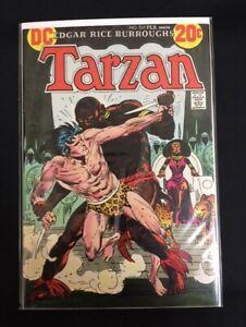 Tarzan #217 Joe Kubert Denny O'Neil Very Fine / Near Mint VF / NM (9.0) DC 1973