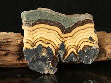 Schalenblende consisting ofalternating bands of sphaleritebrunckite galena d92