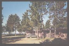 Postcard DEERTON Michigan/MI Pine Cone Motel Motor Court 1950's