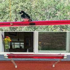 New listing Hummingbird Feeder With Hole Birds Feeding Transparent Pipe Outdoor