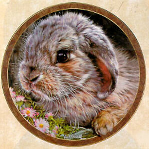 Bunny Tales Collection, by Vivi Crandall, Bradford Exchange Plate, Miss Daisy