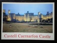 POSTCARD B45-13 CAERNARVONSHIRE CASTELL CAERNARFON CASTLE