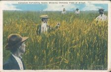 CANADA Canadian harvesting scene 1910s PC