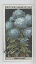 1925 Wills Flower Culture in Pots Tobacco Base 48 Trachelium Non-Sports Card 0a1