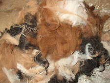Alpaca Mixed Colours Fibre Raw Unwashed Wool 200g