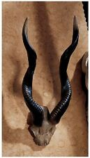 African Savanna Kudu Antelope Horns Wall Trophy Sculpture Wildlife