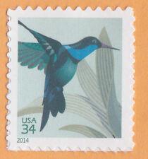 HUMMINGBIRD BIRD Nature 2014 POSTAGE Postcard STAMP Wildlife United States MNH