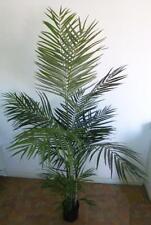 Artificial plants & flower Golden Cane Palm 190cm PP61A