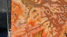 High Grade Dryhead Agate Slab Lapidary Rough