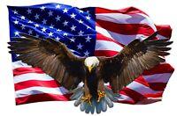 "Soaring Bald Eagle American Flag Decal 12"" Free Shipping"