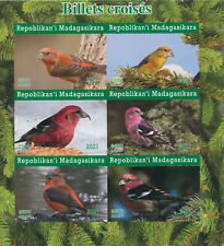 More details for madagascar 2021 mnh birds on stamps crossbills crossbill 6v impf m/s i