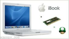 1 GB di memoria RAM UPGRADE PER Apple iBook G4 1.2 Ghz, G4 1.33 Ghz e G4 1.42 GHz