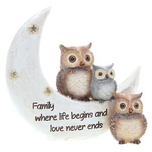 Night Owl Family Life Begins Love Never Ends Ornament Gift