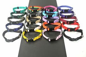 Puppy Dog Collar Adjustable Small X Small Strong Durable 13mm Webbing 20 Colours