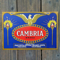 Vintage Original CAMBRIA ORANGE CRATE CALIFORNIA Box Label Unused NOS