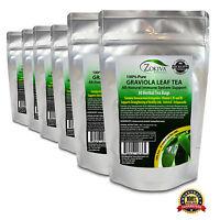 Graviola Tea 6-Pack (180 Bags) Soursop - Annona muricata  Premium 100% Pure Leaf