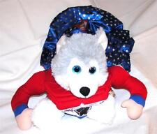 Animal Welfare League Benefit Costume Parade Halloween SIZE S SUPER HERO DOG