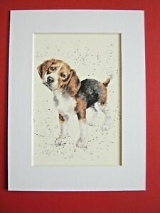 """BEAGLE DOG MOUNTED PRINT 6x8"""" WATERCOLOR PRINT ART PICTURE"""