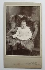 Cabinet Photograph Baby Seated on Wicker Chair and Fur Throw Henkel Studio NJ