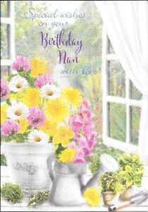 BIRTHDAY CARD, SPECIAL WISHES TO NAN WITH LOVE - FLOWERS, WINDOW, GARDEN