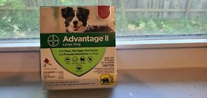 Bayer Advantage II for Large Dogs 21-55 Lbs - 4 Pack -  FLEA TREATMENT CONTROL!
