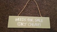 weeds for sale diry cheap wooden retro sign
