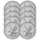 Lot of 10 - 2021 $1 Type 2 American Silver Eagle 1oz BU <br/> Buy with Confidence & Free Shipping from Pinehurst!