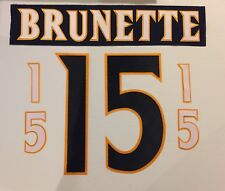 Atlanta Thrashers Jersey Lettering Kit Any Name/Number