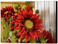 2 Red Sunflower Floral Garden Canvas Giclee Prints each 12x16  by Floyd Snyder