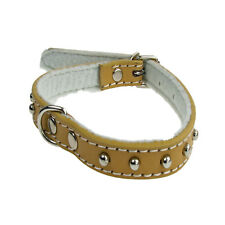 Pet Dog Collar Leather Studded Neck Steel 350mm Strong Cotton Lined  Brown