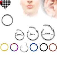 Seamless Hinged Segment Clicker Ring Earrings Hoop Ear Lip Nose Septum Piercing