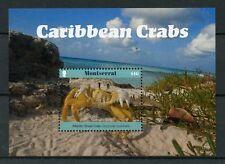 Montserrat 2017 neuf sans charnière Caraïbes CRABES 1 V S/S Ghost crabe crustacés timbres