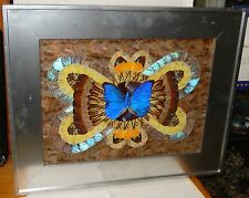 LARGE REAL BUTTERFLY WINGS HAND SIGNED ON BACK IN PENCIL PAINTING