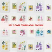 Dried Flowers Leaf Resin UV Filling Material Decoration DIY Epoxy Molds Jewelry