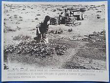 FOTO SECONDA GUERRA MOND 1941 SOLDATO ITALIANO IN PAUSA FRONTE DI SOLLUM 3/17