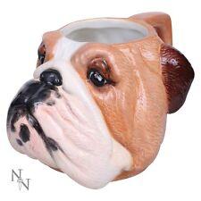 Nemesis Now English Bulldog Shaped Cermaic Mug Ornament Coffee Cup Drinks 18cm