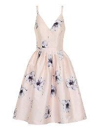 ditzy dresses 123