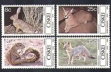 Ciskei 1982 Small Animals/Cat/Rabbits/Fox/Squirrel/Nature/Wildlife 4v set b10062